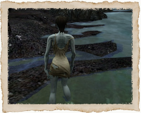 Zombie mesh avatar back